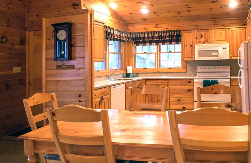 Cabin kitchen at Mountain Springs Lake Resort.
