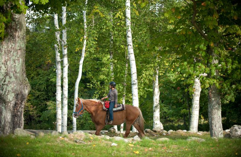 Horseback riding at The Mountain Top Inn & Resort.