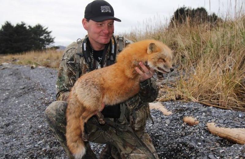 Fox hunting at hunting at Port Lions Lodge.