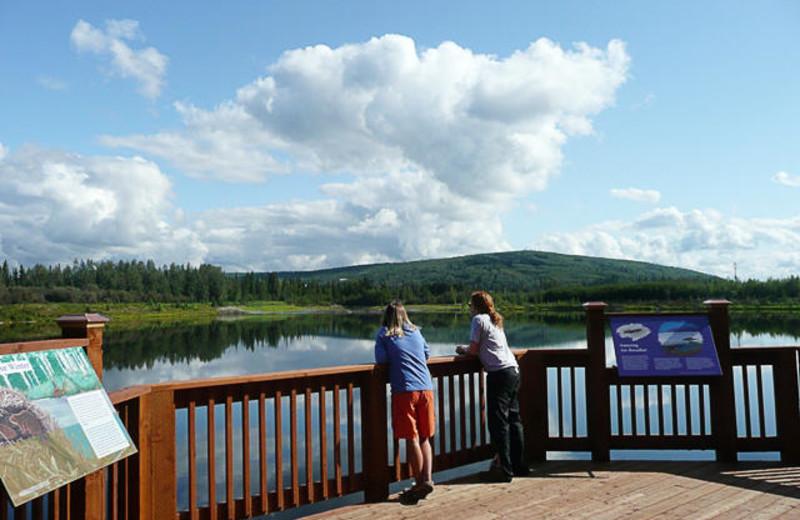 Wildlife sanctuary at Bear Lodge.