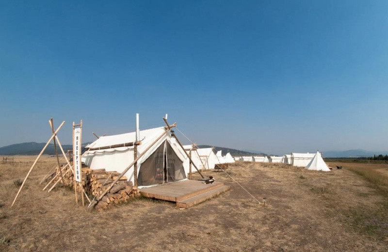 Tents Available at Yellowstone Under Canvas