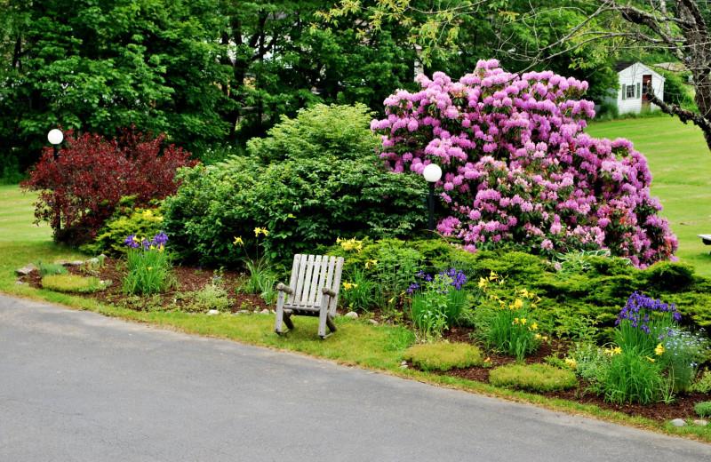 Garden at Cedar Crest Inn.