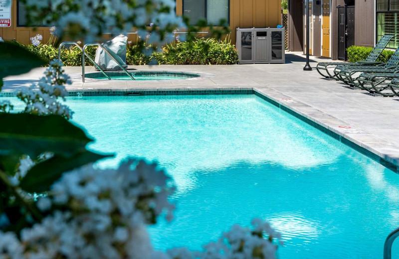 Outdoor pool at Best Western Plus Stevenson Manor Inn.