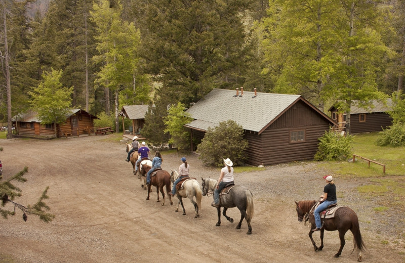 Horseback riding at Absaroka Mountain Lodge.