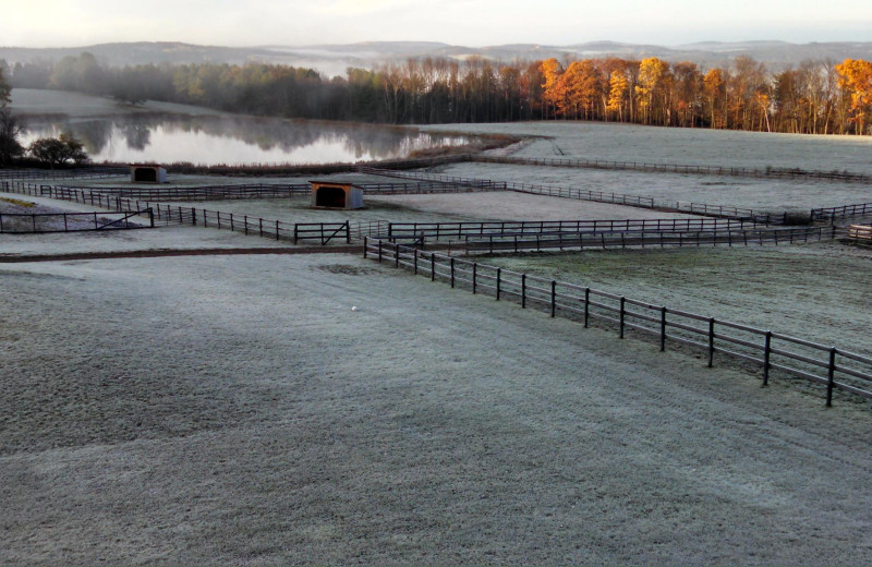 Frost at B & B Ranch.