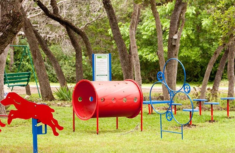 Dog park at Yogi Bear's Jellystone Park Hill Country.
