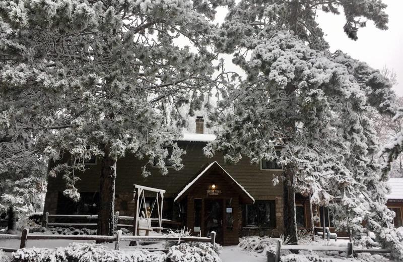 Winter exterior at Timber Trail Lodge & Resort.