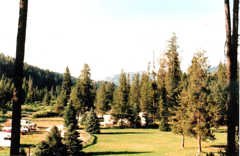 Camping Area at Silver Creek Plunge
