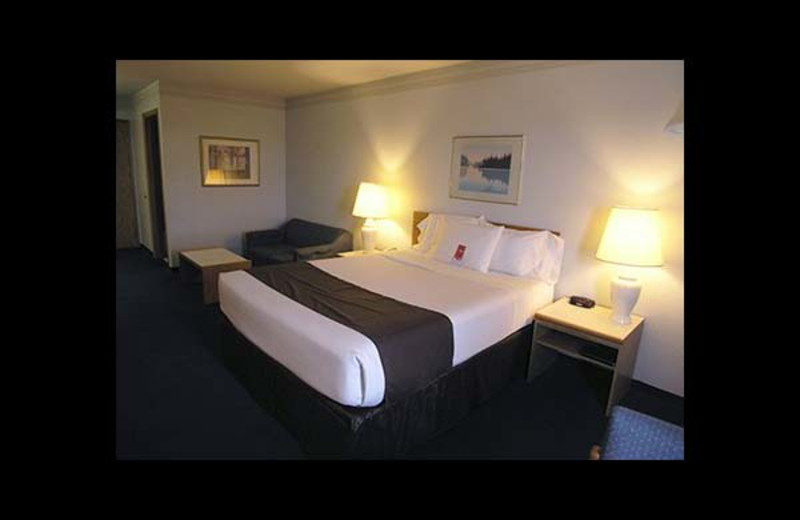 Guest room at Econo Lodge Sequim.