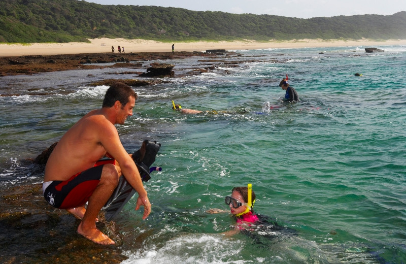 Snorkeling at Thonga Beach Lodge.