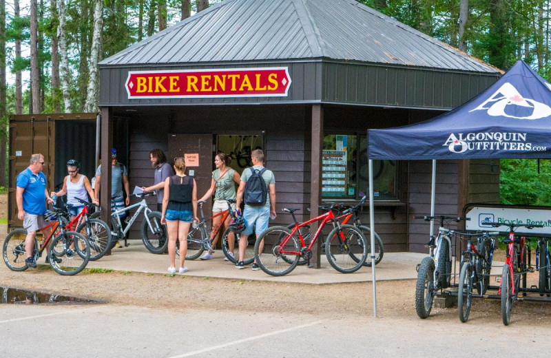 Bikes at Wolf Den Hostel and Nature Retreat.