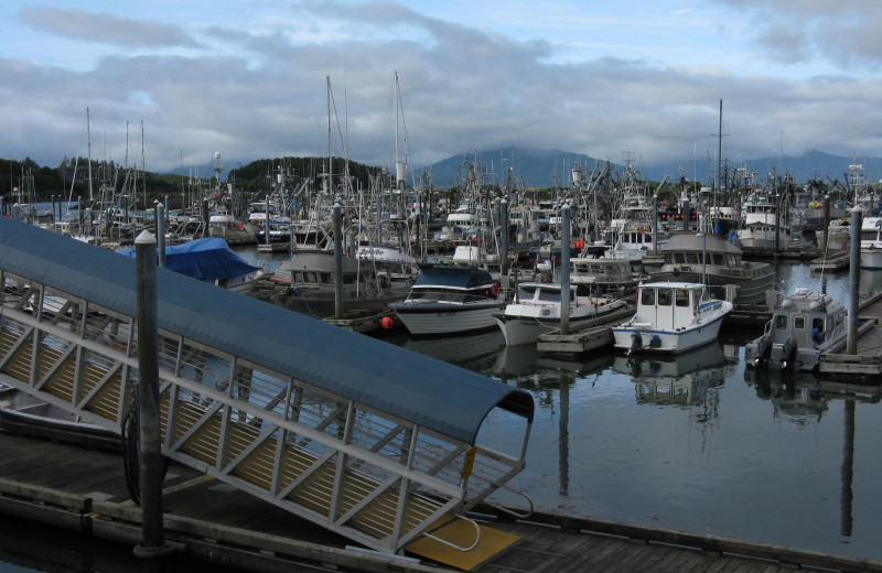 Boats at Kodiak Charters.