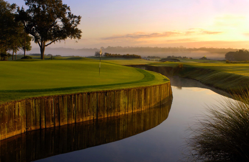 Golf course at Villas of Grand Cypress.