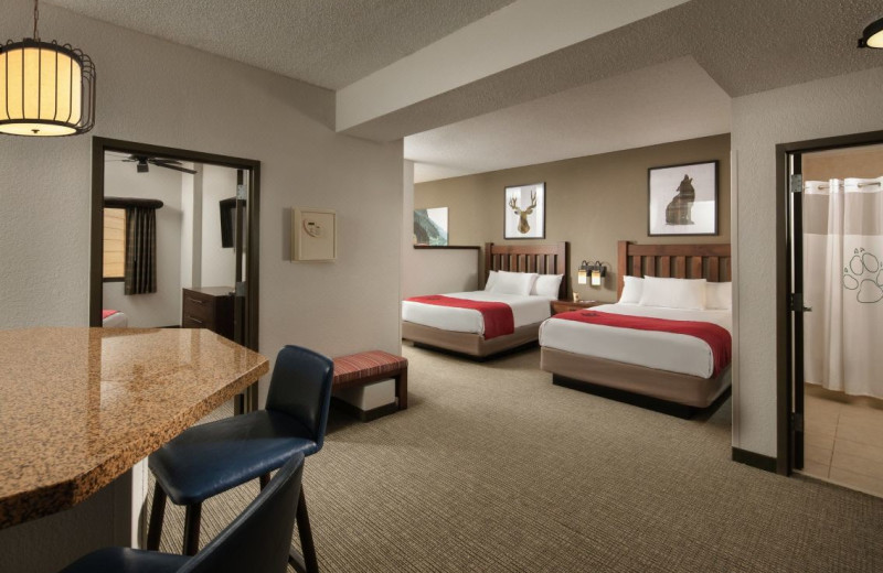 Guest room at Great Wolf Lodge - Scotrun.