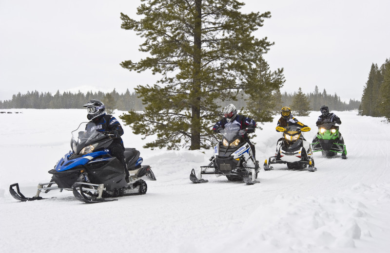 Snowmobiling at Catskill Mountains Resort.