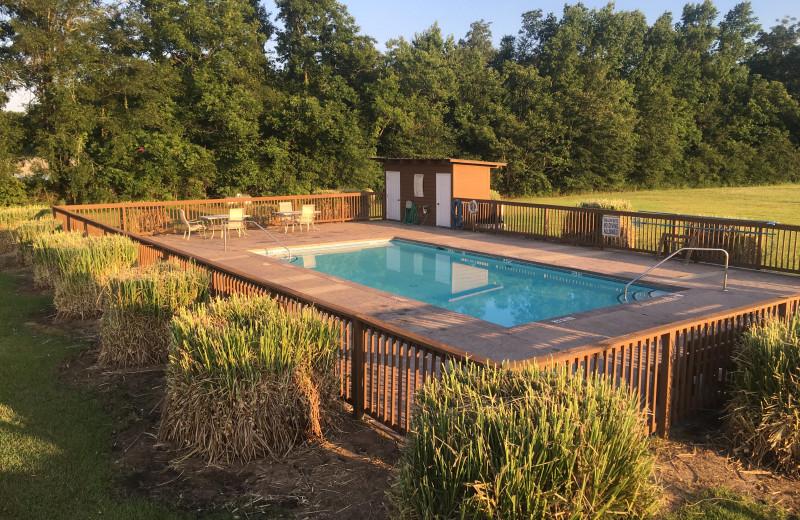 Outdoor pool at Buckhead Ranch.