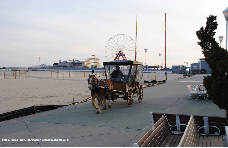 Carriage rides at Hilton Suites Ocean City Oceanfront.