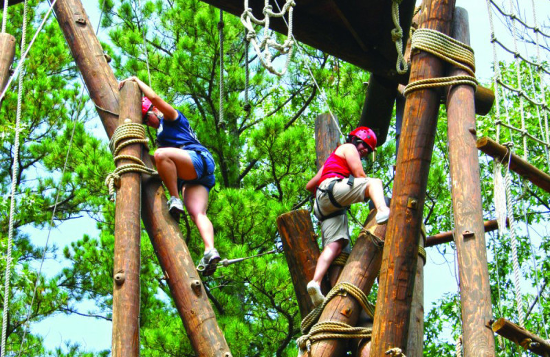 Rope course at YMCA Trout Lodge & Camp Lakewood.