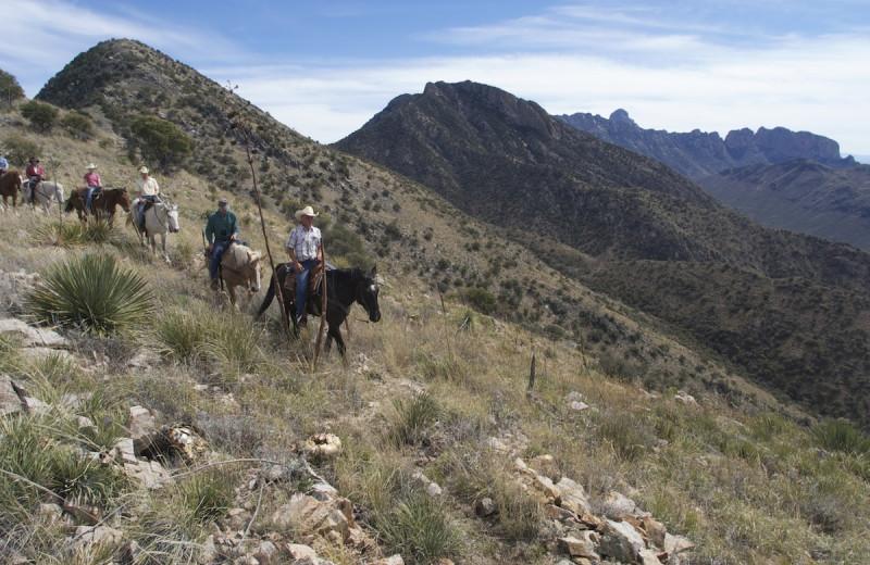 Horseback riding at Elkhorn Ranch.