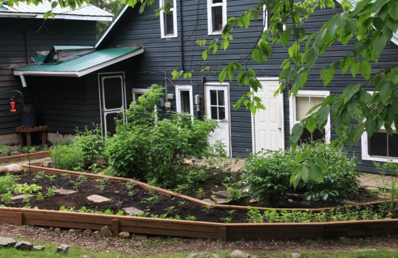 Garden at Bartlett Lodge.