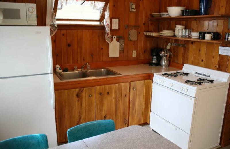 Cabin kitchen at Big McDonald Resort.