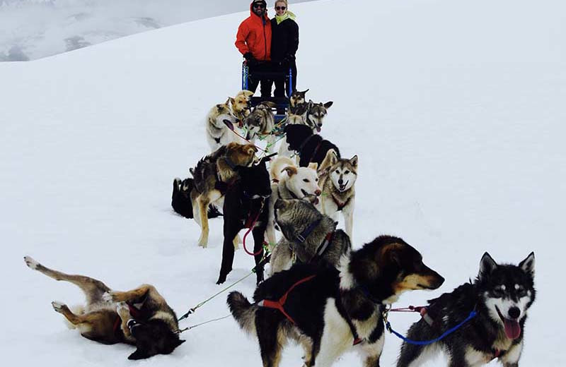 Dog sled at Trail Lake Lodge.