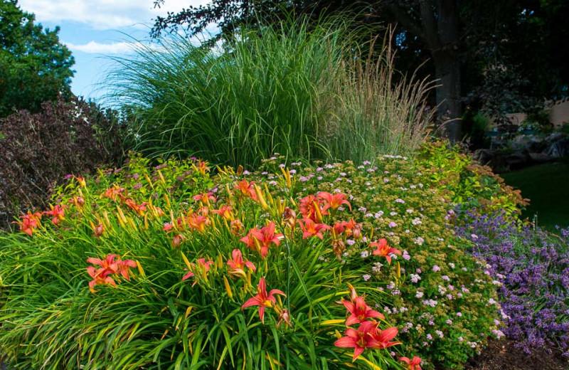 Garden at The Lodge at Arrow Lakes.