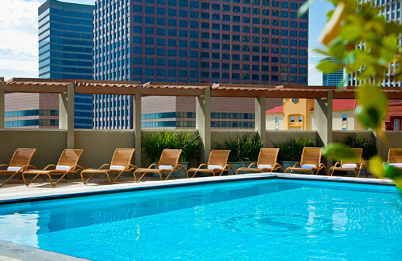 Pool View at Sheraton New Orleans Hotel