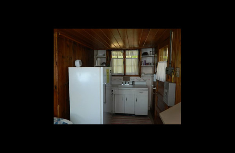 Cabin kitchen at Northern Ambiance Lodge.
