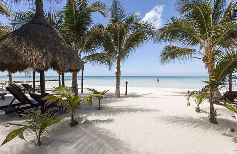 Beach at Holbox Collection Hotels.