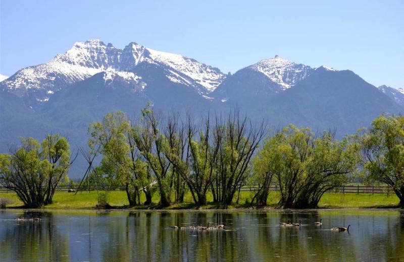 Mountains at Ninepipes Lodge.