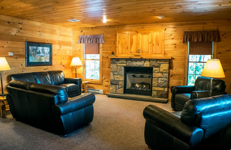 Cabin living room at Mountain Springs Lake Resort.