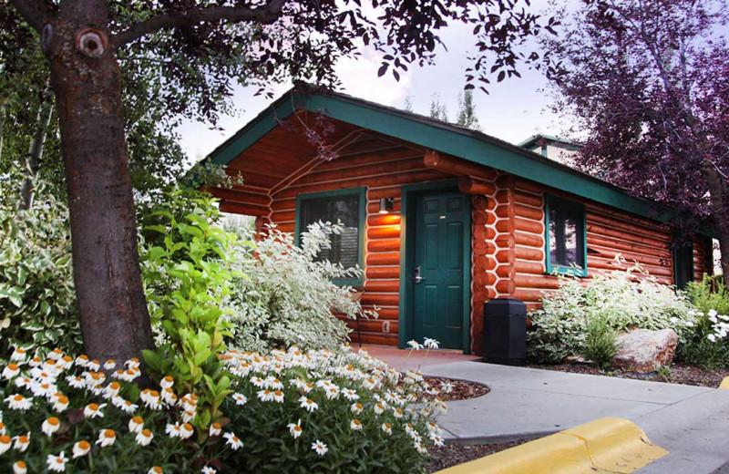 Cabin at Flying Saddle Resort.