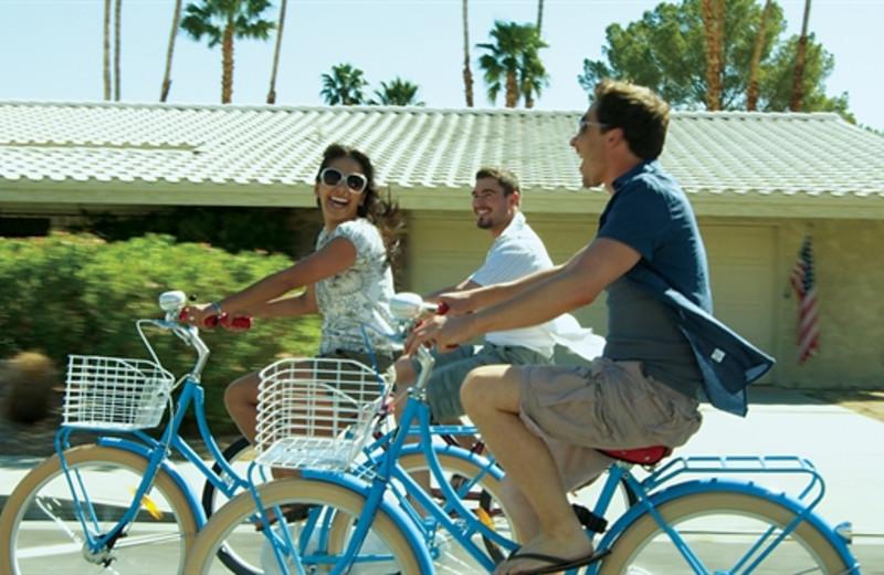Bike riding around the city at Random Haus.