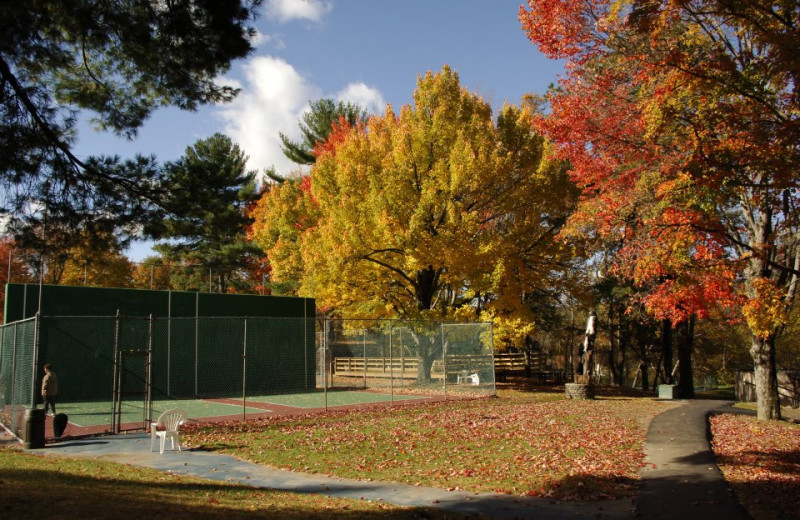 Tennis Courts at Pine Ridge Dude Ranch