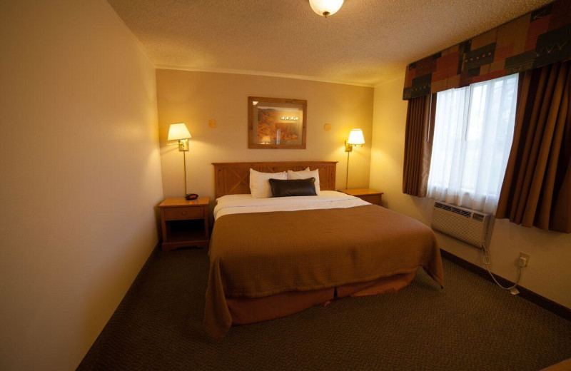 Guest room at Best Western Plus Ruby's Inn.