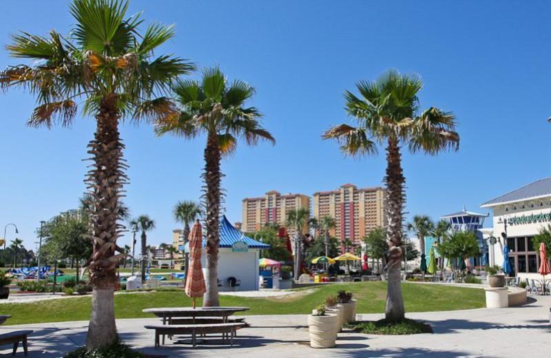 Grounds at Calypso Resort & Spa.