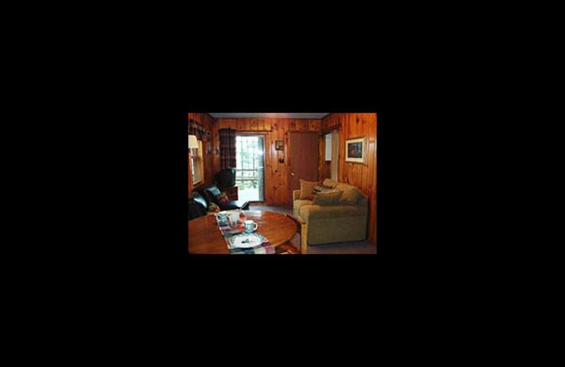 Cabin living room at Lakeview Resort on Grindstone.