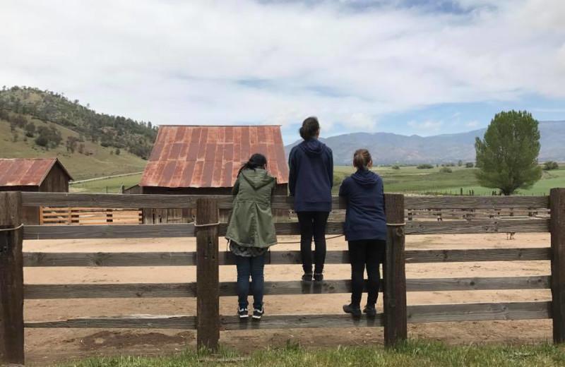 Ranch at Rankin Ranch.