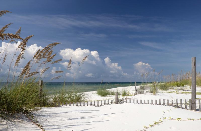 Beach at Brett/Robinson.