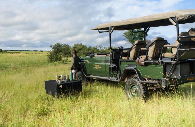 Safari at Selinda Camp.
