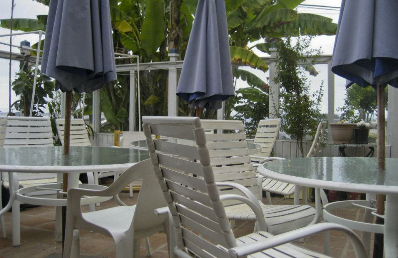 Patio at Capistrano Seaside Inn.