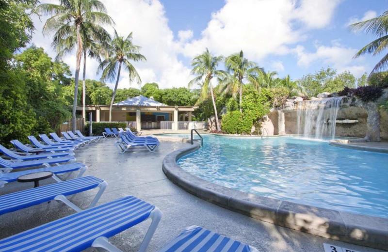 Outdoor pool at Key Largo Grande Resort & Beach Club.