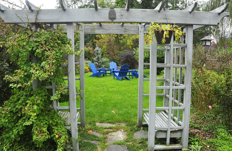 Garden view at Maple Terrace Motel.