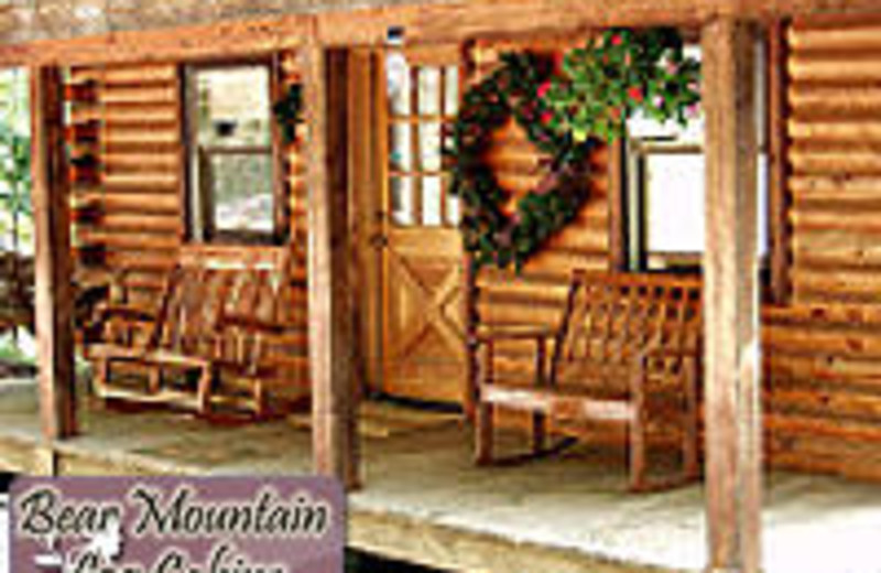 bear big sale real mountain this cabins for cabin catalina estate amazing