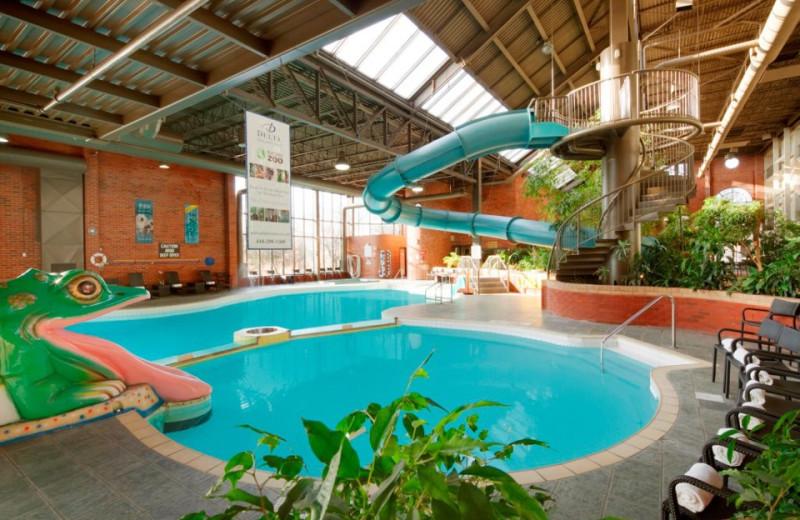 Indoor Pool at Delta Toronto East