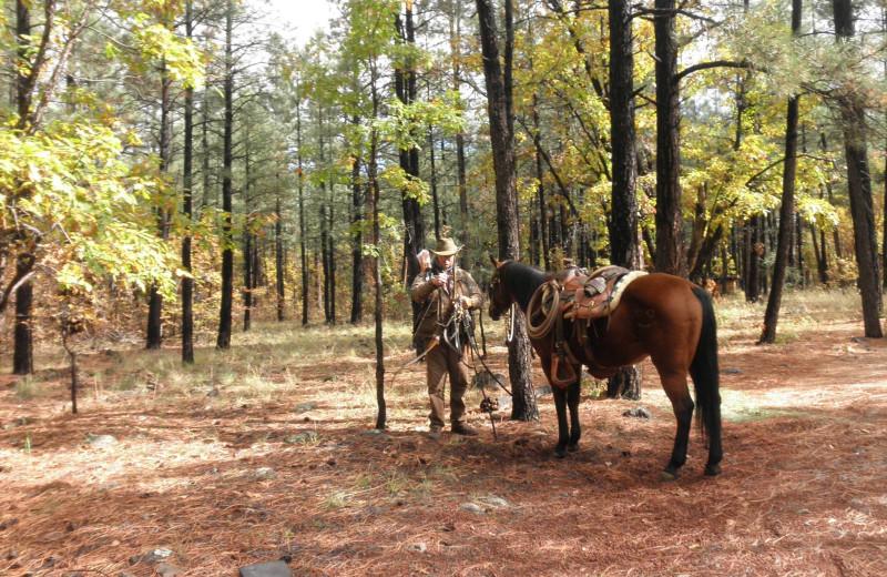 Horseback riding at Buck Springs Resort.