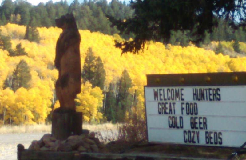 Hunters welcome at Arrowhead Mountain Lodge.