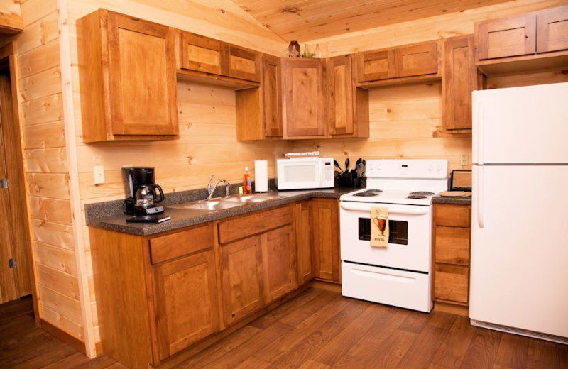 Two bedroom kitchen at Shawnee Forest Cabins.