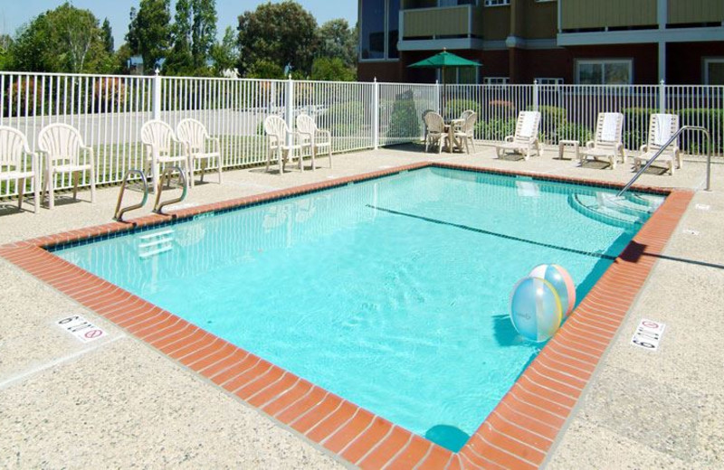 Outdoor Swimming Pool at Quality Inn Santa Clara Convention Center